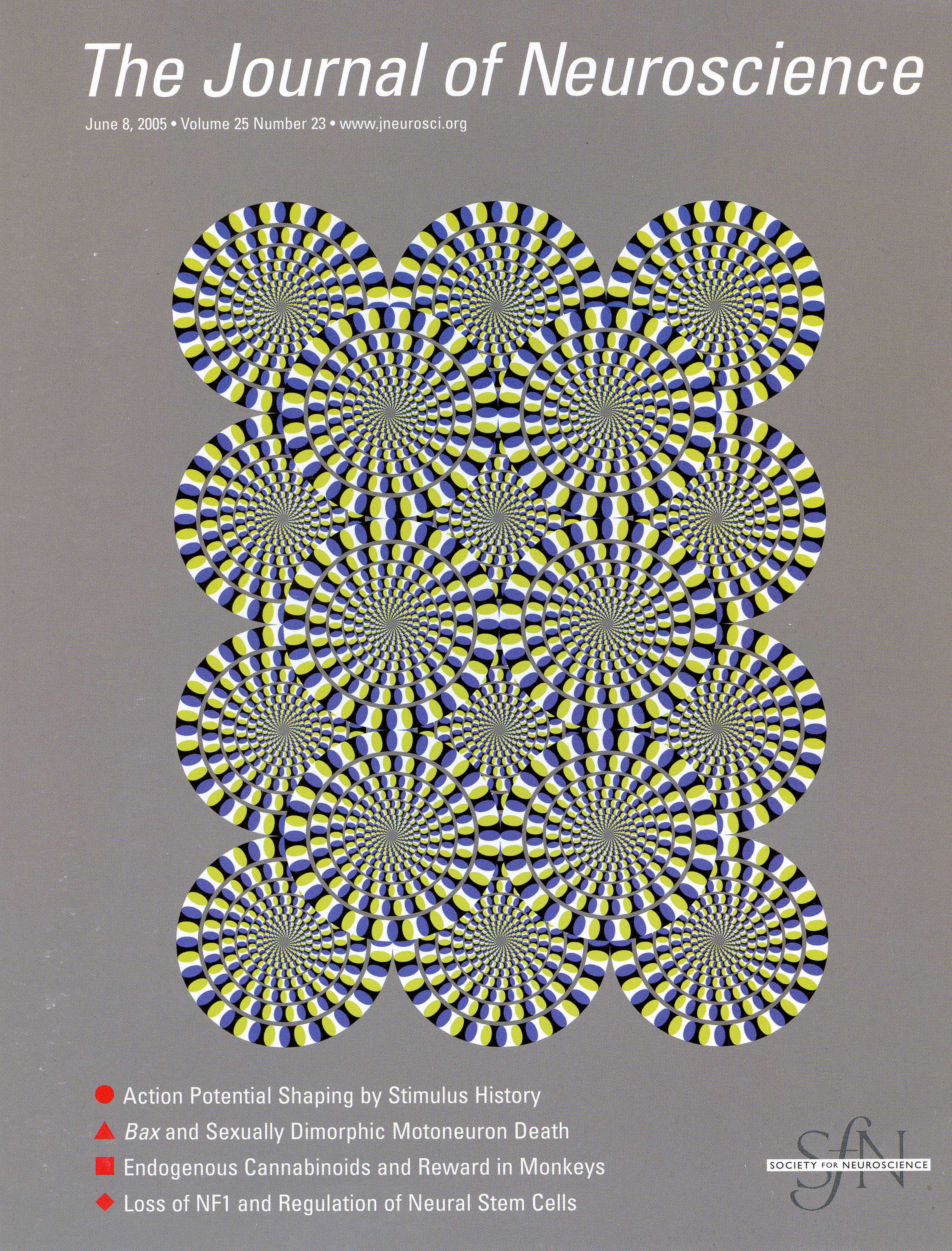 The dress journal of vision -  Yazdanbakhsh A Pack Cc Livingstone Ms 2005 Neural Basis For A Powerful Static Motion Illusion Journal Of Neuroscience 25 23 5651 5656